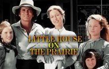 سریال خانه کوچک الگوی مناسب نقش پدر و مادر در خانواده