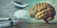 اتفاقاتی که با مصرف هروئین (گرت یا دوا ) برای مغز می افتد چیست ؟