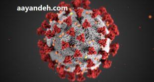کرونا ویروس در افراد معتاد