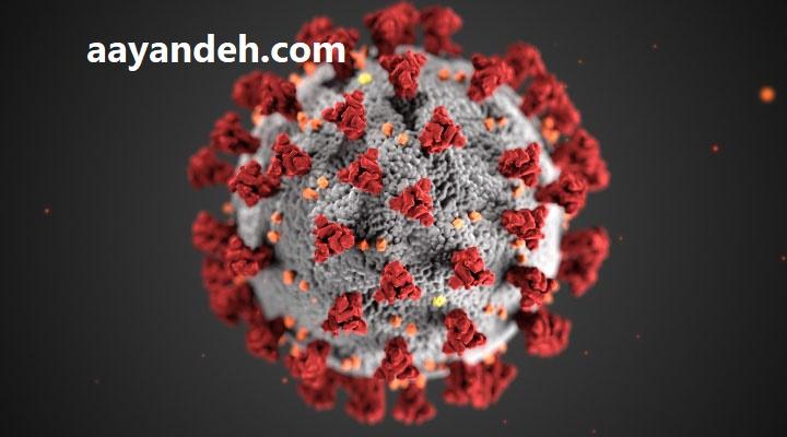 animated graphic 2019 ncov - کرونا ویروس در افراد معتاد
